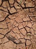 Tierra seca de la grieta Foto de archivo