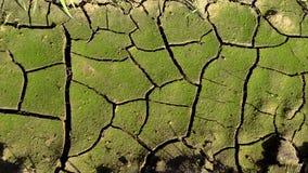 Tierra seca de la grieta del primer Fotografía de archivo