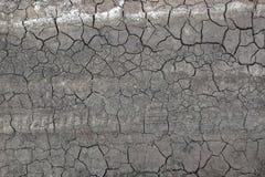 Tierra seca en grietas y pistas del neumático Fotos de archivo libres de regalías
