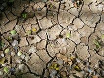 Tierra seca en otoño Imagen de archivo libre de regalías