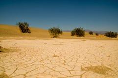 Tierra seca y agrietada en el desierto Death Valley Fotos de archivo