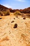 Tierra secada foto de archivo
