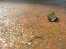 Tierra sola Foto de archivo libre de regalías