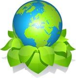 Tierra verde con las hojas Fotografía de archivo