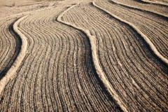 Tierras de cultivo Fotografía de archivo libre de regalías