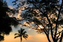 Tierras de labrantío de Hawaii Fotografía de archivo