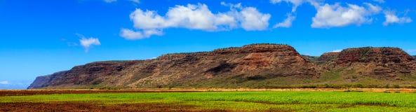 Tierras de labrantío de Kauai Foto de archivo