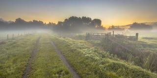 Tierras de labrantío de niebla con la pista de tierra Foto de archivo libre de regalías