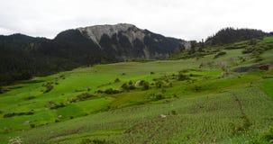 Tierras de labrantío de Zhagana Fotografía de archivo libre de regalías