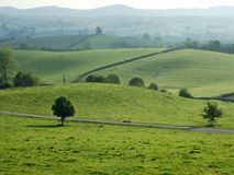 Tierras de labrantío del balanceo cerca de Kendal Fotografía de archivo libre de regalías