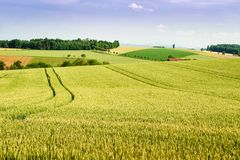 Tierras de labrantío en Austria septentrional Fotografía de archivo libre de regalías