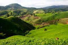 Tierras de labrantío en la montaña Fotos de archivo libres de regalías