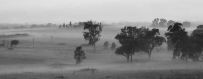 Tierras de labrantío en niebla de la mañana Imágenes de archivo libres de regalías