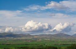 Tierras de labrantío hermosas de la primavera Fotos de archivo libres de regalías