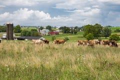 Tierras de labrantío de Pennsylvania Imagen de archivo