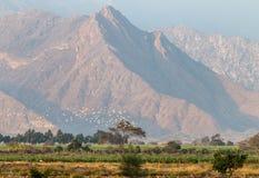 Tierras de labrantío peruanas con los Andes en el fondo Fotos de archivo