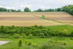Tierras de labrantío que rodean a William Kain Park en el condado de York, Pennsylva Imagen de archivo