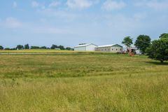Tierras de labrantío rurales del condado de York Pennsylvania del país, en un día de verano Fotografía de archivo
