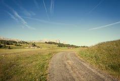 Tierras de labrantío verdes del verano Imagen de archivo libre de regalías