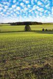Tierras de labrantío Imagen de archivo