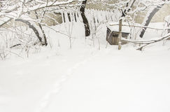 Tierspuren auf Schnee lizenzfreies stockbild