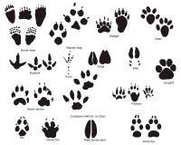 Tierspuren mit Namen Stockbilder