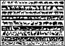 Tiervektoren Stockfotografie