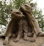 Tierwand-Waschbären Lizenzfreie Stockbilder