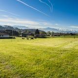 Tierzucht in der Schweiz Stockfotografie