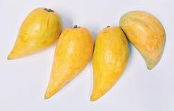 Tiesa, eggfruit, Canistel Fotografie Stock Libere da Diritti