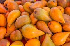 Tiesa, fruit d'oeufs, Canistel, campechiana de Pouteria Photos libres de droits