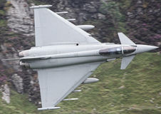 Tifón militar del jet Foto de archivo libre de regalías