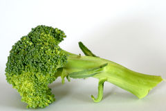 Tige de broccoli Images libres de droits