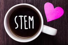 Tige des textes d'écriture La destruction de développement de signification de concept des embryons humains pour la science et la Images stock