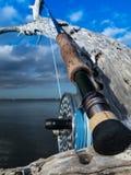 Tige et bobine de mouche d'eau de mer images libres de droits