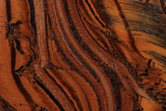 Tigerögontextur Royaltyfria Bilder