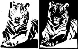 Tiger. Black and white tiger.  vector Stock Photography