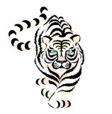 Tiger. Drawing tiger on white background royalty free illustration