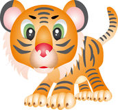 Tiger. Illustration, isolated on a white background Stock Photography