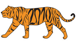 Tiger 2010. Tiger - symbol of the 2010 year. Rasterized image royalty free illustration