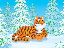 Tiger. Clip-art illustration of a Siberian tiger lying on the snow in taiga Stock Photos