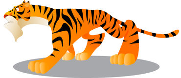 Tiger. Vector illustration of a cute tiger Stock Image