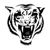 Tiger. Illustration of the head of a tiger royalty free illustration