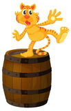 A tiger above the wooden barrel Royalty Free Stock Images
