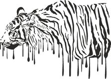 Tiger, abstract painting on a white background Royalty Free Stock Photos