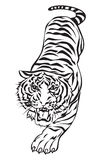 Tiger action. Tiger walking, graphic black and white vector Royalty Free Stock Photo