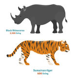 Tiger action wildlife animal danger rhinoceros mammal fur wild bengal wildcat character rino vector illustration Royalty Free Stock Image