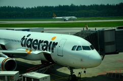 Tiger Air plane parked at Singapore Changi Airport Stock Photos