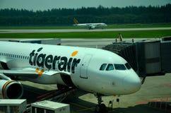Tiger Air-vliegtuig bij de Luchthaven die van Singapore wordt geparkeerd Changi Stock Foto's
