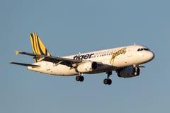 Tiger Airways Airbus A320-232 VH-VNP na aproximação à terra no aeroporto internacional de Melbourne Fotografia de Stock